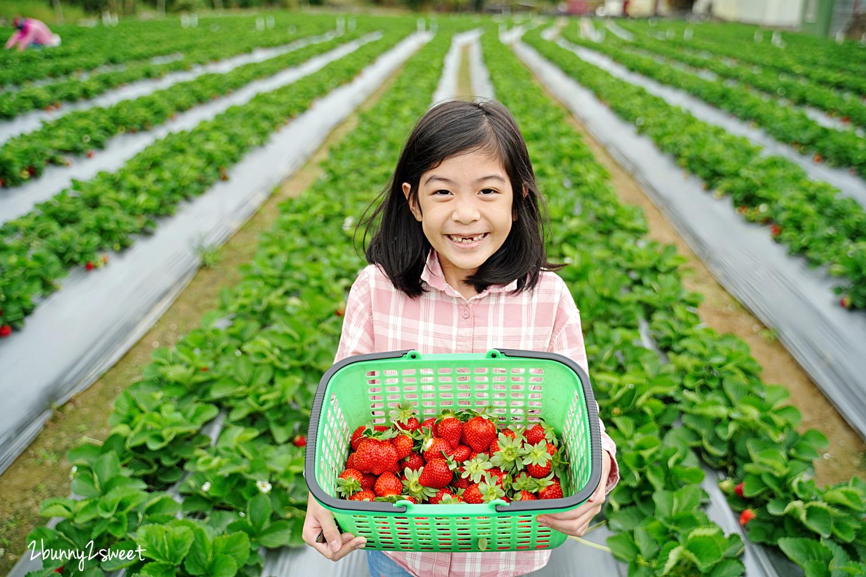 2020-1207-阿松高架草莓園-15.jpg