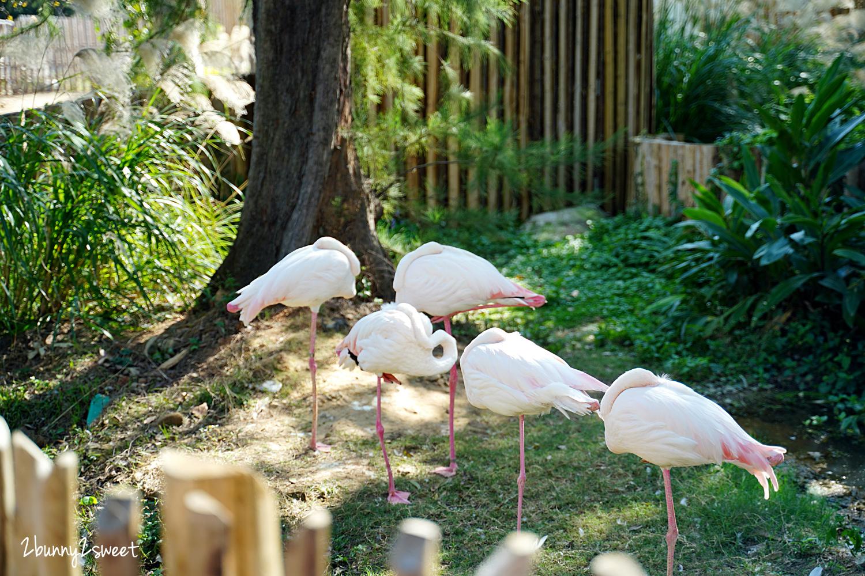 2021-0116-新竹市立動物園-13.jpg