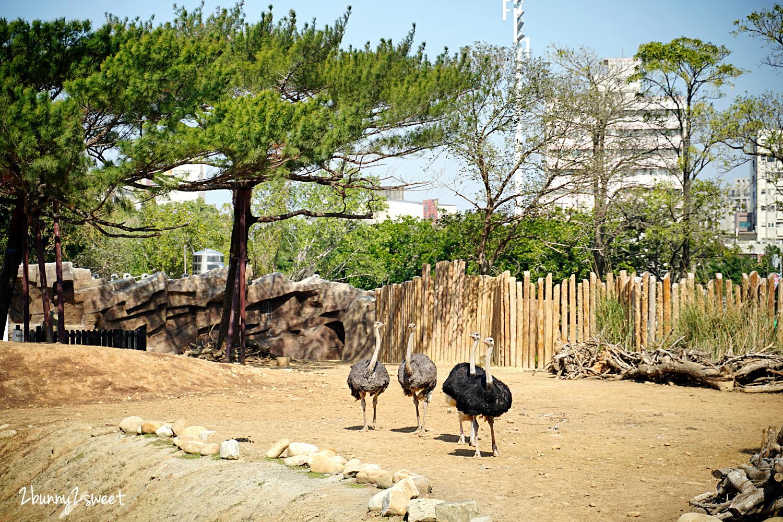 2021-0116-新竹市立動物園-16.jpg