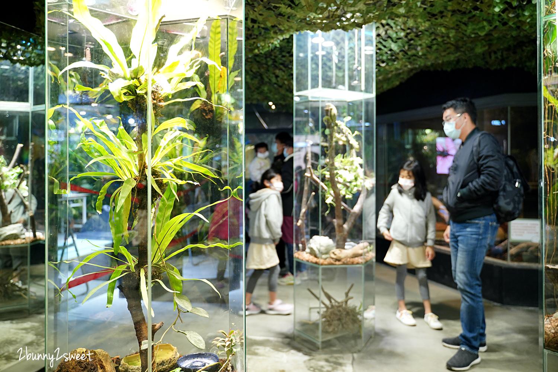 2021-0117-台灣昆蟲館-13.jpg
