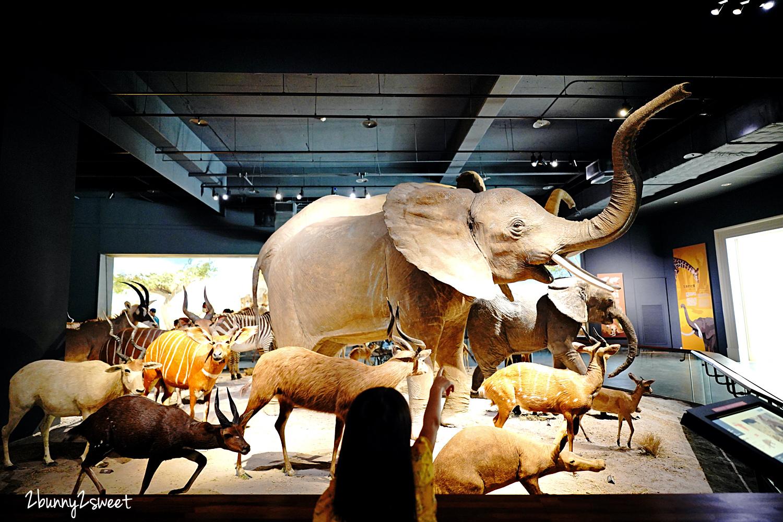 2021-0829-奇美博物館-09.jpg