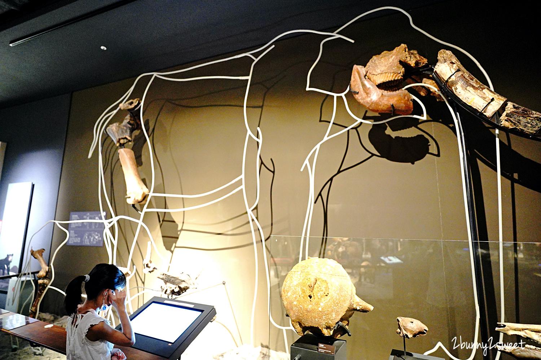 2021-0829-奇美博物館-07.jpg