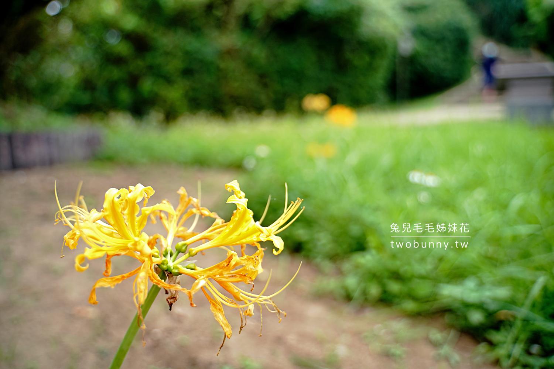 2021-1002-獅頭山公園步道-14.jpg