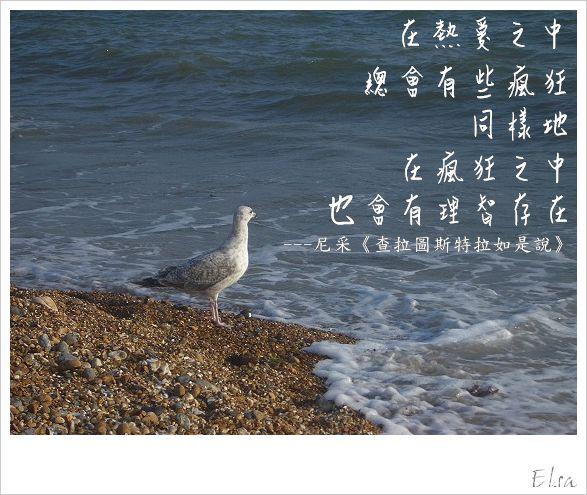 IMGP0157.jpg