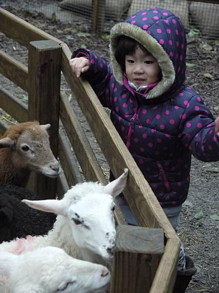 這小孩一點都不怕生超可愛