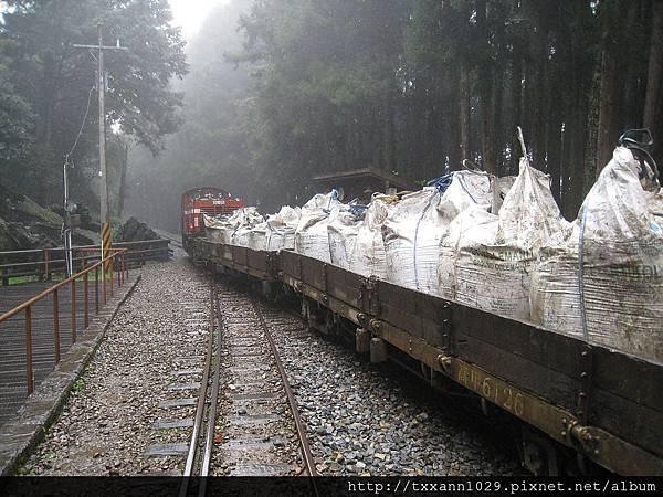 121111森林裡的小火車.jpg