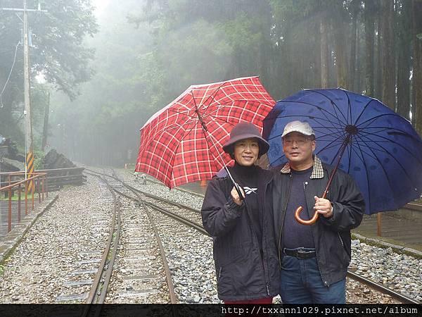 121111森林裡的小火車2.jpg