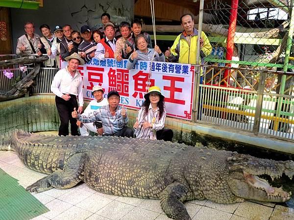 0229006鱷魚大王.jpg