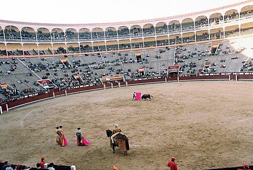 西班牙鬥牛實況