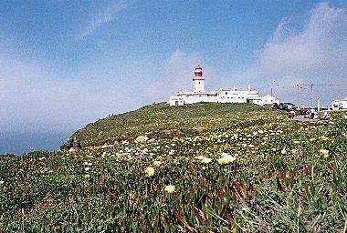洛卡岬燈塔~繁花盛開