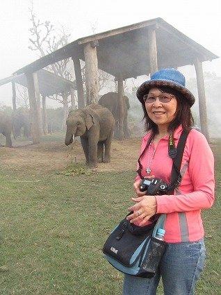 120321尼泊爾之旅[紅]雙胞胎大象 196