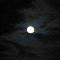100922中秋月光晚會 151.jpg