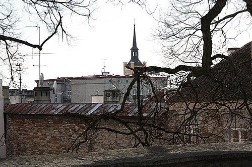 愛沙尼亞511