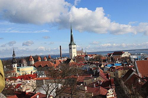 愛沙尼亞城區496