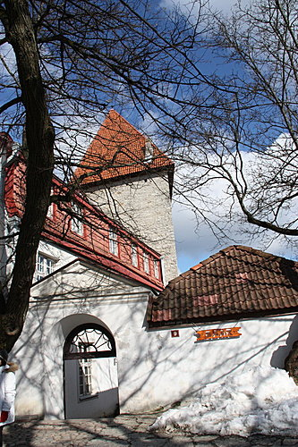 愛沙尼亞 508