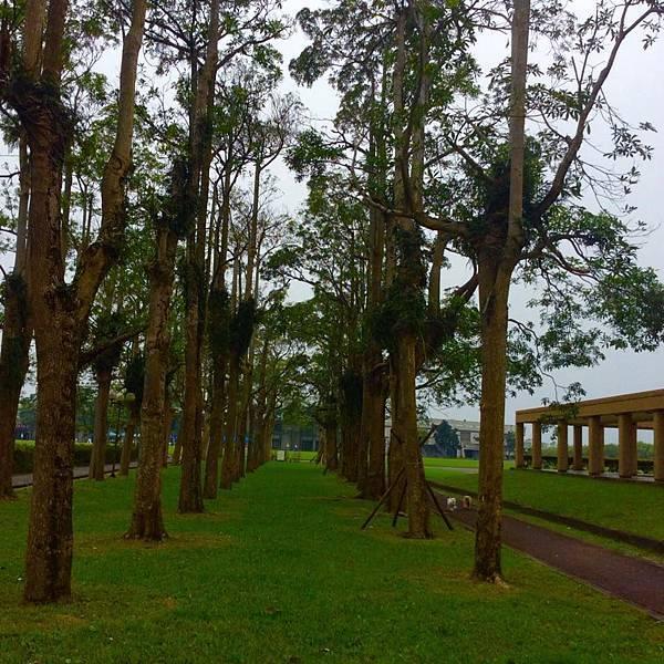 漂亮公園.jpg