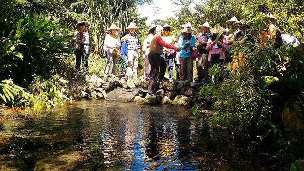 參觀潔淨的生態水道 (2).jpg