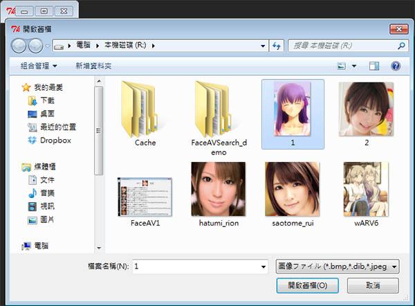 FaceAVSearch