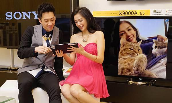 袁艾菲開心跟陳漢典分享自己和貓咪的合影