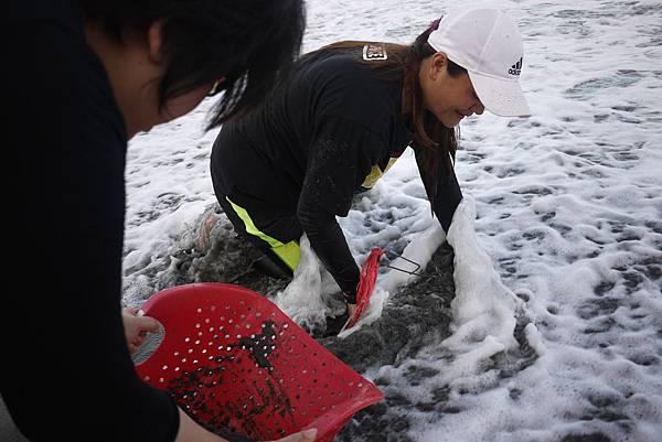 翰品酒店花蓮帶領旅客尋訪浪花蟹,了解生態保育的重要性2