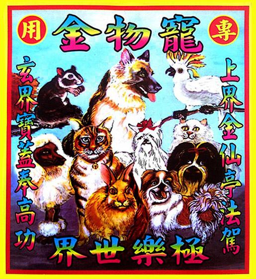 圖說四、樂天店家音樂影片購推出寵物專屬「極樂世界寵物金紙」,讓視毛小孩為家人的消費者也能款待最愛的寵物