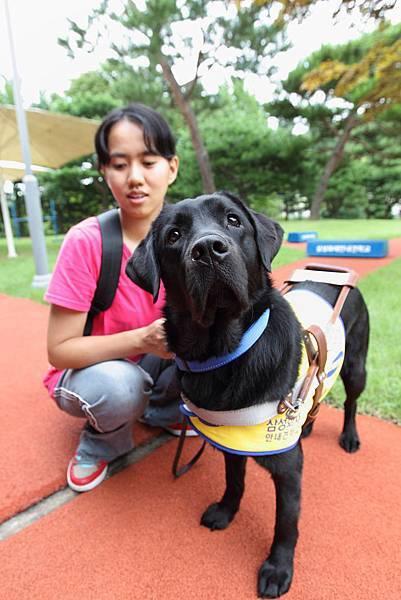 靖茹親赴韓國與導盲犬Tamra度過4天共同訓練
