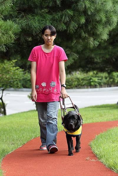 台韓合作幫助視障者尋覓導盲犬伴的案例再添典範