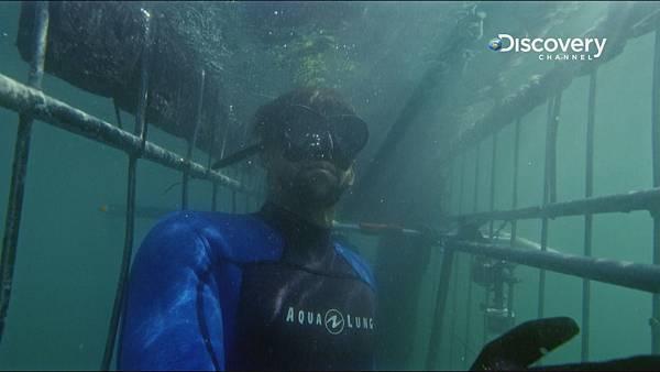 菲爾普斯在鐵籠內 觀察鯊魚動作