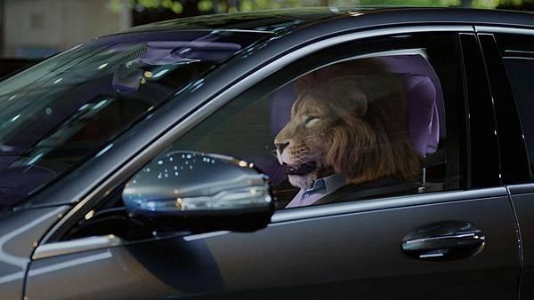 「ENERGIZING 舒活套件」讓乘客徹底放鬆紓壓、消除煩躁,就算是「獅子」也能變「乖貓」