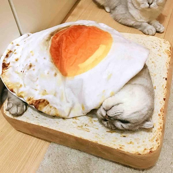 【新聞附件4】荷包蛋被子 吐司坐墊