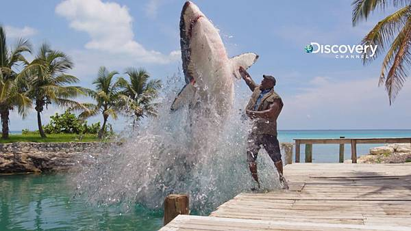 Discovery頻道鯊魚周歡慶30週年《俠客會鯊魚》邀名人來助陣 NBA巨星大鯊魚俠客歐尼爾 居然最害怕鯊魚