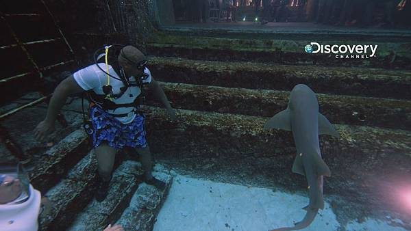 Discovery頻道鯊魚周歡慶30週年《俠客會鯊魚》邀名人來助陣 俠客歐尼爾與鯊魚一起漫遊