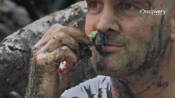 艾德在節目中生吃疑似蝸牛的生物,不僅口感像鼻涕般的黏稠,味道更像是腐爛的蛋臭味令人反胃.jpg