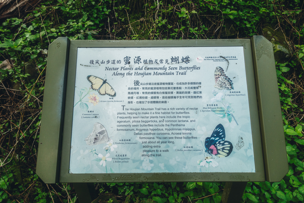 DSC06292-編輯.JPG