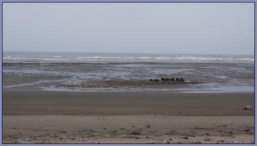新屋鄉沿海 - 沙灘.大海.陰天
