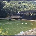 大溪後慈湖導覽行程 - 沙濾池後方的木造湖畔平台