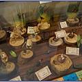大溪後慈湖導覽行程 - 四號辦公室販售的李永謨樹皮編織藝品