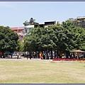 桃園市文昌公園 - 綠蔭蔽日的老樹群