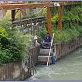 桃園縣八德市廣豐公園 - 桃園大圳旁垂釣的都市漁夫