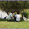 桃園八德埤塘生態公園