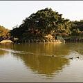 夕陽餘暉下的國立體育大學 (林口中正體育園區) 志清湖