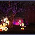 2011年苗栗台灣燈會照片 - 10