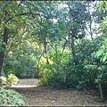 桃園蘆竹貓尾崎步道 - 林相非常原始,且還有機會看到穿山甲 ^^