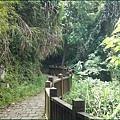 新竹五峰清泉部落 - 林木鬱鬱的環山步道