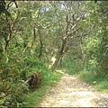 桃園蘆竹 - 林相原始的羊稠坑森林步道