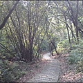 新竹湖口老街-仁和步道.jpg