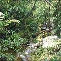 石壁寮溪人行賞魚賞鳥賞螢木棧道的綠樹、小橋、流水