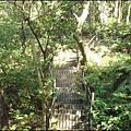 蘆竹五酒桶山步道 - 海山之路 1