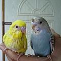 蛋黃和菲菲合照