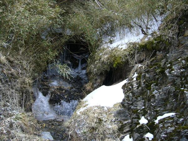中間那個溶化中的冰很有趣